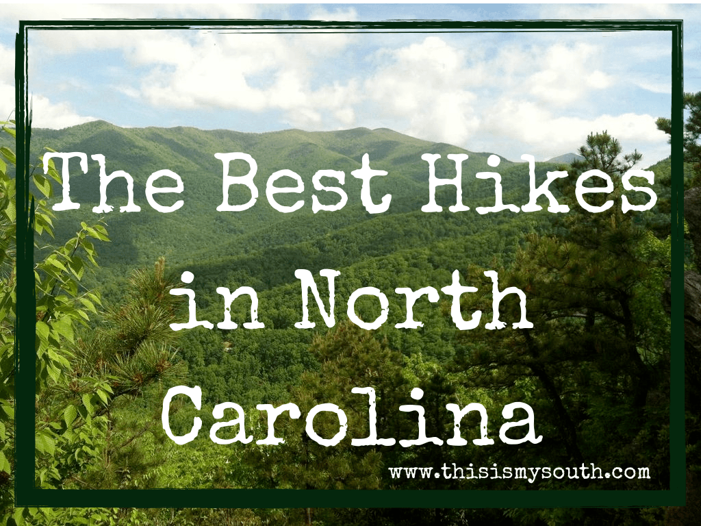 The Best Hikes of North Carolina