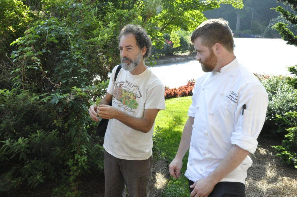 foraging asheville