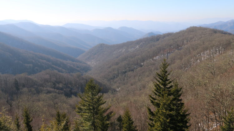 Best Hikes in Tennessee